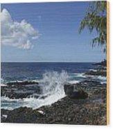 Coast Of Kauai Wood Print