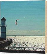 Coast To Coast Sea To Sky Flies Curiosity Crescent Kite Night Scenes On The Canal Carole Spandau Wood Print