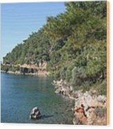 Coast To Oren Wood Print