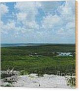 Coastal Aransas Nwr Wood Print