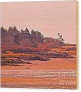 Coastal Bay At Low Tide Wood Print