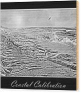 Coastal Calibration Wood Print