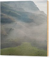 Coastal California  2.2847 Wood Print