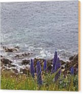 Coastal Cliff Flowers Wood Print