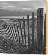 Coastal Dunes In Black And White Wood Print