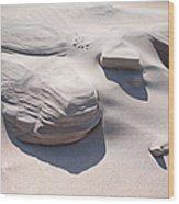 Coastal Dunes In Holland 1. Wood Print