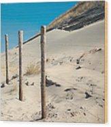 Coastal Dunes In Holland 2 Wood Print