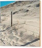 Coastal Dunes In Holland 3 Wood Print