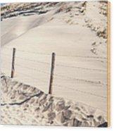 Coastal Dunes In Holland Wood Print
