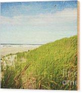 Coastal Dunes Wood Print