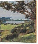 Coastal Fiji Wood Print