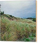 Coastal Flora, Oregon Wood Print