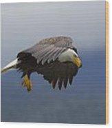 Coastal Hunter Wood Print