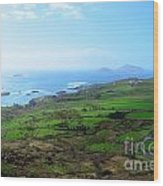 Coastal Ireland Wood Print