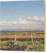 Coastal Landscape County Mayo Wood Print