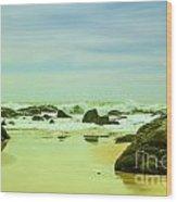 Coastal Landscape Of Sri Lanka Wood Print