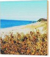 Coastal Lookout Wood Print