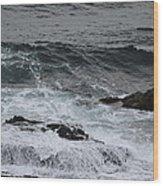 Coastal Maine 3 Wood Print