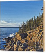 Coastal Maine Landscape. Wood Print