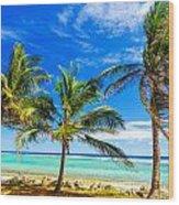 Coastal Palm Trees Wood Print