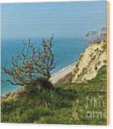 Coastal Path - West Bay To Eype  Wood Print