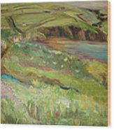 Coastal Path In Wales Wood Print by Ellen Howell