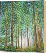 Coastal Redwoods Wood Print