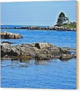 Coastal Route 1 In Maine Wood Print