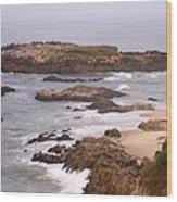 Coastal Scene 9 Wood Print
