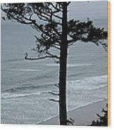 Coastal Tree Wood Print