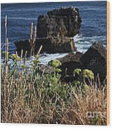 Coastal View From Cascais  Wood Print