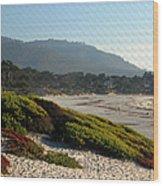 Coastal View - Ice Plant II Wood Print