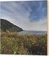 Coastal Wildflowers Of Oregon Wood Print