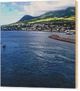 Coastline Of St Kitts Wood Print