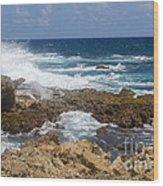 Coastline Surge Wood Print