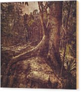 Coba Tree Wood Print by Stuart Deacon