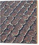 Cobblestones Wood Print