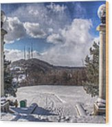 Cobbs Hill Park In Winter Wood Print