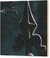 Cobwebs Wood Print
