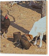 Cock N Goat Wood Print