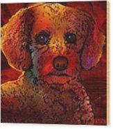Cockapoo Dog Wood Print