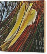 Cockatoo In Abstract Wood Print
