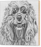 Cocker Spaniel Detail Wood Print