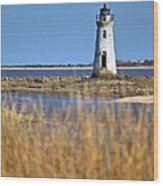 Cockspur Lighthouse In The Sanannah River Wood Print