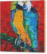 Coco The Talkative Parrot Wood Print