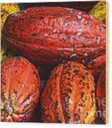 Cocoa Pods Wood Print