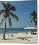 Coconut Beach  Wood Print