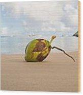 Coconut Wood Print