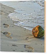 Coconut On The Sand Wood Print