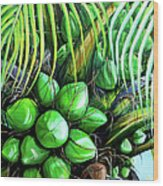 Coconut Tree   Sold Wood Print